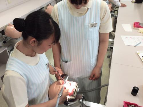 口腔保健学科の実技授業